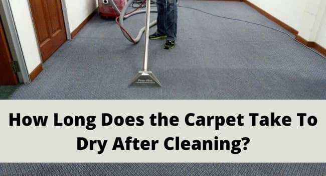 How Long Does the Carpet Take To Dry After Cleaning